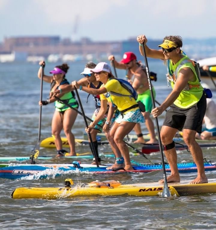 Paddleboard racing enthusiasts